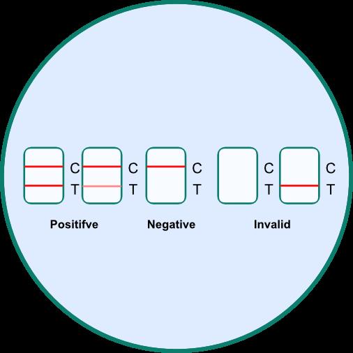 Corona Antigen Spucktest und Speicheltest - Testergebnis auswerten