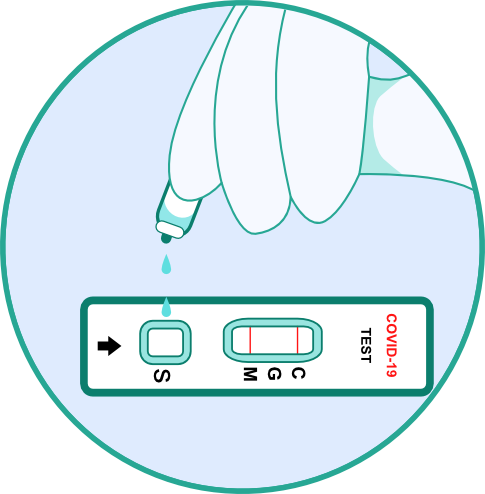 Corona Antikörper Schnelltest - Schritt 5