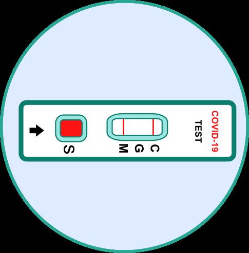 Corona Antikörper Schnelltest - Schritt 4